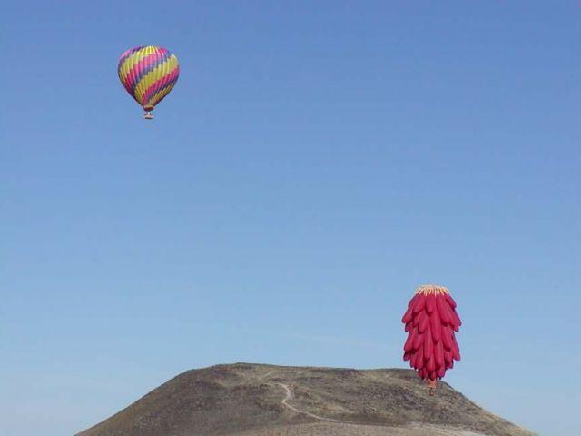 Hot Air Balloon Tours at Sevilleta National Wildlife Refuge Picture