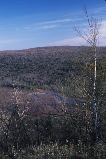 Porcupine Mountains Picture
