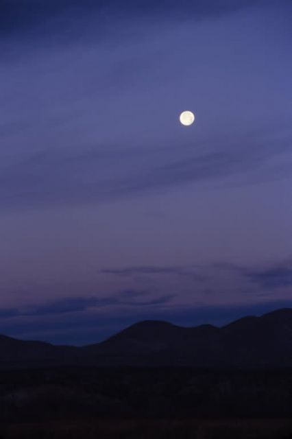 Moon Over Bosque Del Apache National Wildlife Refuge Picture