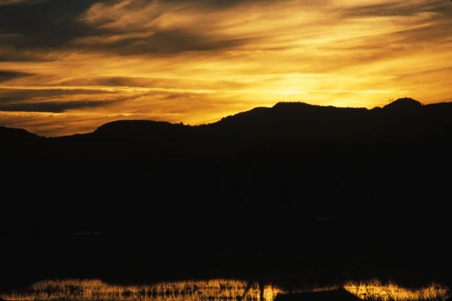 Sunrise at Bosque Del Apache National Wildlife Refuge Picture