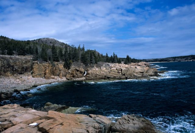 Acadia National Park Picture