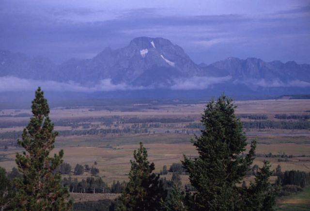 Grand Teton National Park Picture