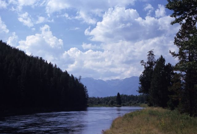 Snake River Picture