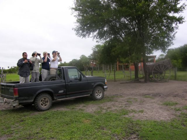Bird watching in the Pantanal Picture