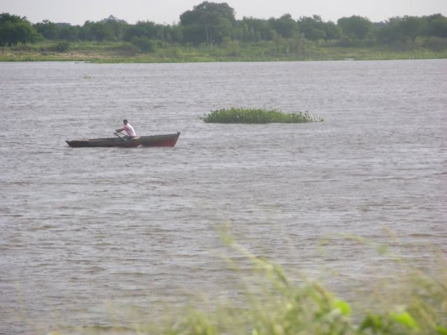 Rowboat and Water Hyacynth on Paraguay River Picture