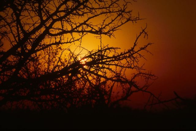 Sunset at Kruger National Park Picture