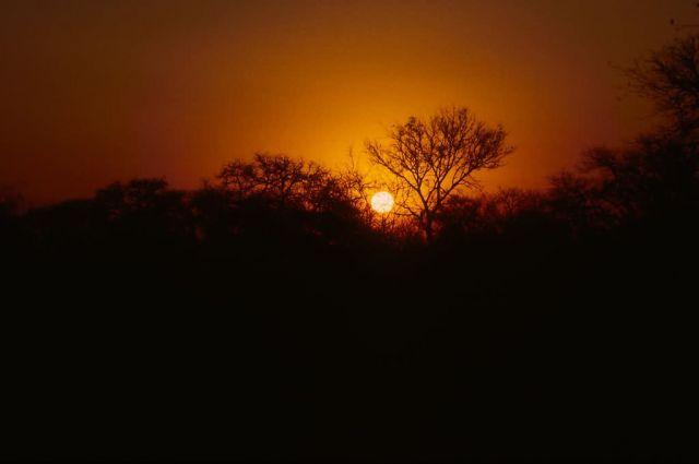 Sunset at Kruger National Park Picture