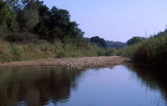 South Africa River Picture
