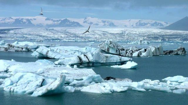 Arctic Iceland Glacier Icebergs Picture