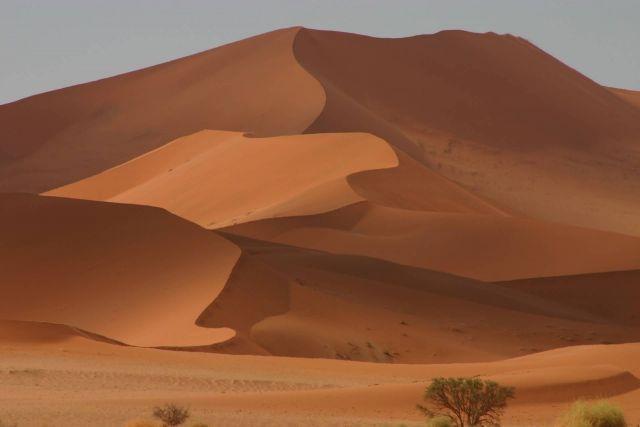 Desert Sand Dunes Picture