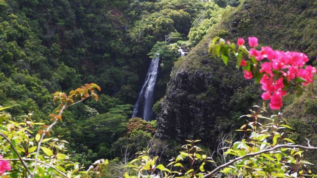 A glimpse of a waterfall surrounded by greenery and flowers. Picture