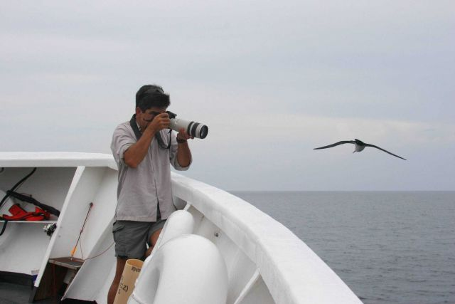 Photographer and bird go eye-to-eye on the NOAA Ship DAVID STARR JORDAN. Picture