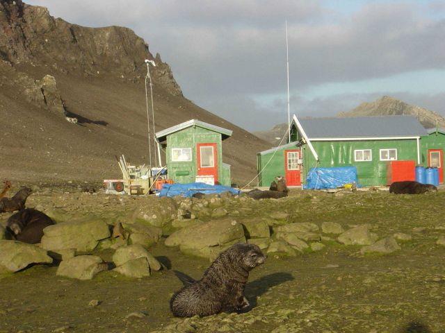 Scientist working and living quarters at fur seal rookery Picture