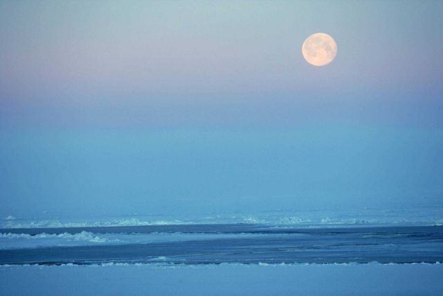 A full moon over Arctic ice Picture
