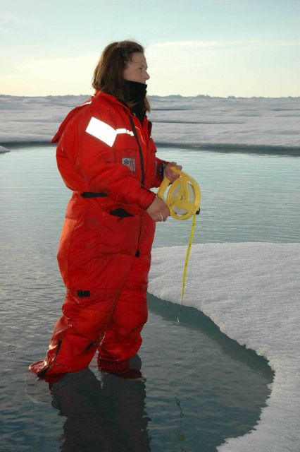 Scientist in floe melt pool making observations Picture