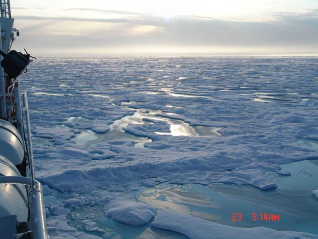 Sun reflecting on an endless succession of floes and melt pools. Picture