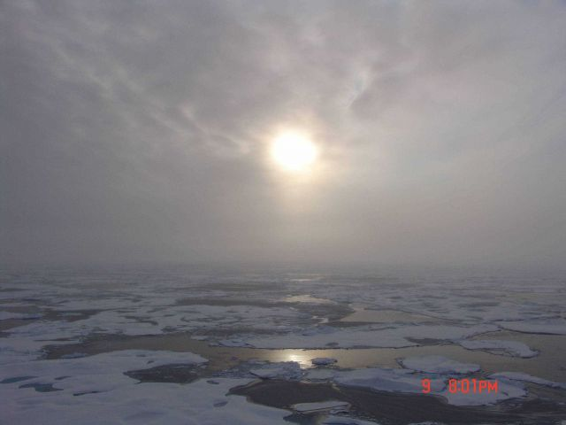 Sun seen through the clouds over first year ice floes. Picture