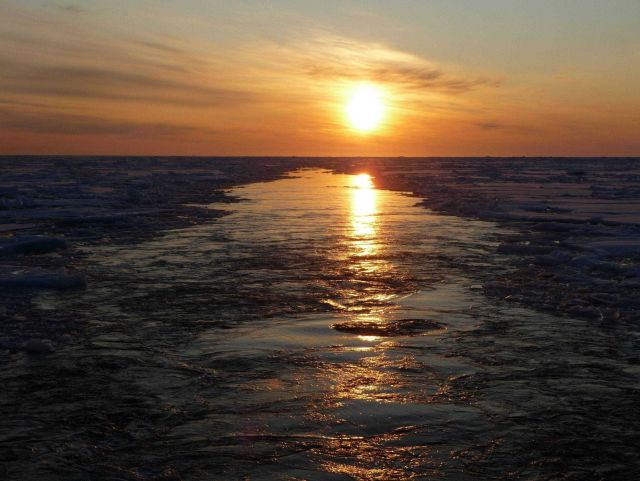 Passing through ice floes with the sun astern. Picture