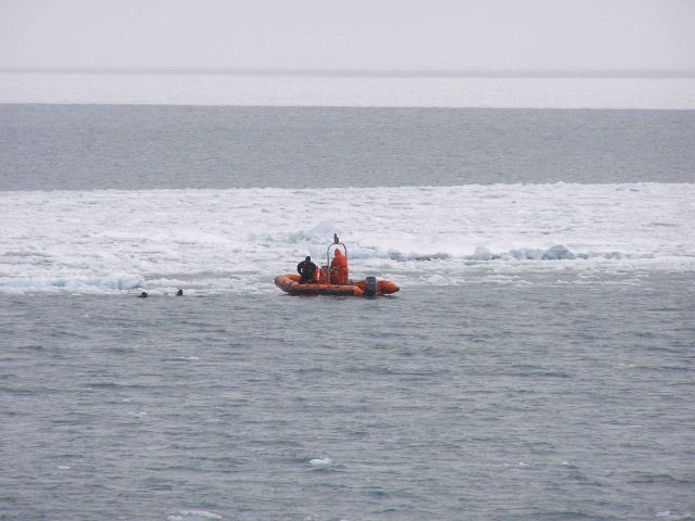 Divers from the MILLER FREEMAN being tended by small boat at edge of ice. Picture