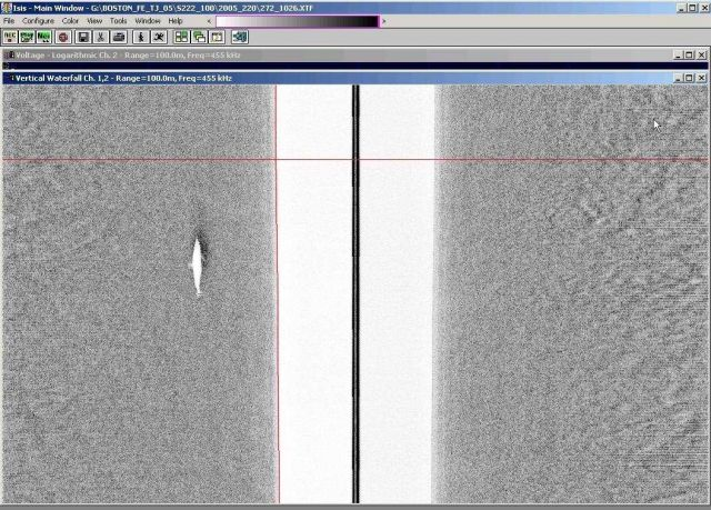 Side Scan sonar image of humpback whale on seafloor off New England. Picture