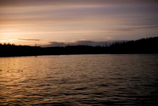 Quiet Alaskan cove at sunset Picture