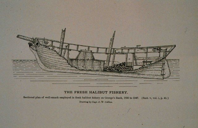 Sectional plan of well-smack employed in the fresh halibut fishery As used on George's Bank 1836 to 1845 Drawing by Capt Picture