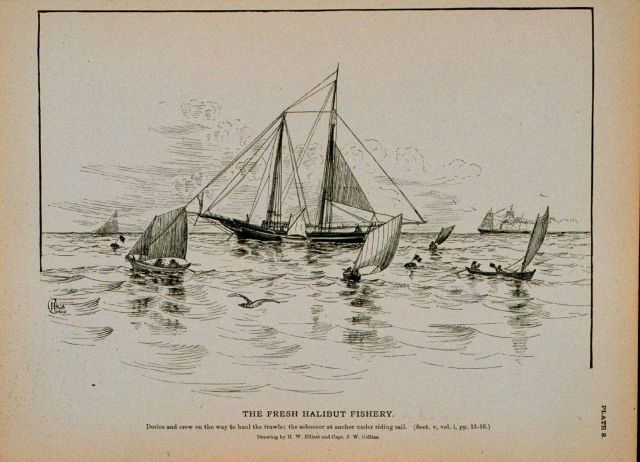 Dories and crew on the way to haul the trawls The schooner at anchor under riding sail Drawing by H Picture