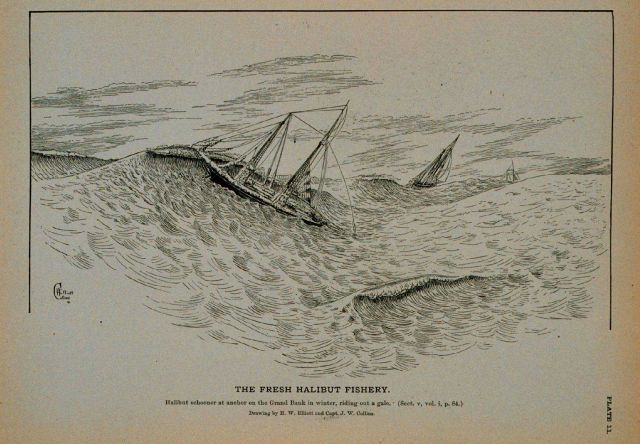 Halibut schooner at anchor on the Grand Bank in winter, riding out a gale Drawing by H Picture