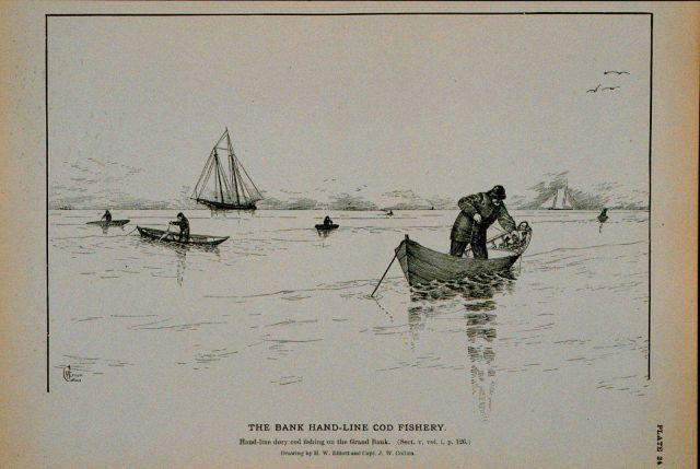 Hand-line dory cod fishing on the Grand Bank Drawing by H Picture