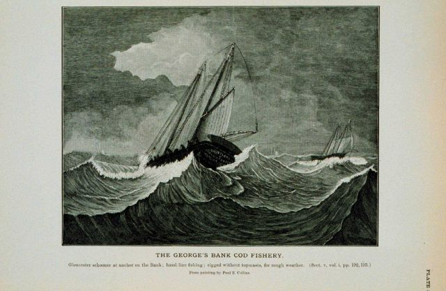 Gloucester schooner at anchor on George's Bank in winter Hand-line fishing for cod; rigged without topmasts for rough weather From painting by Paul E Picture