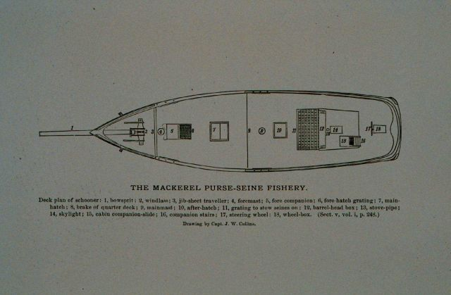 Deck plan of mackerel schooner Drawing by Capt Picture