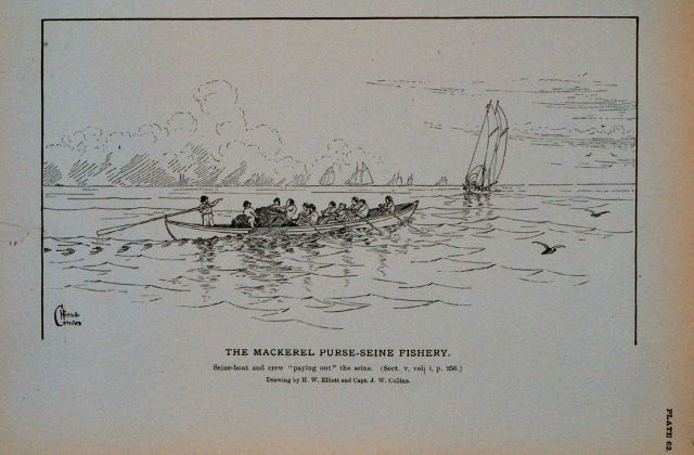 Mackerel seine-boat and crew