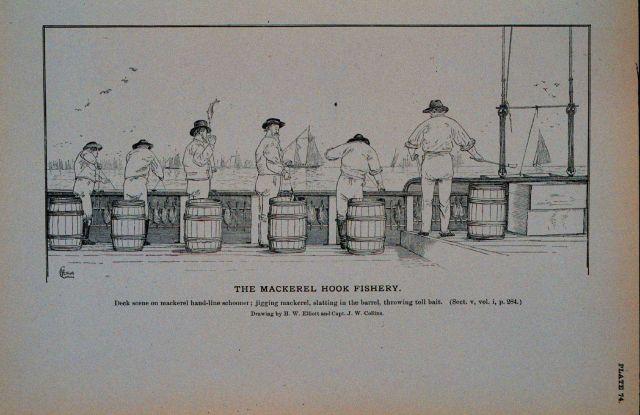 Deck scene on mackerel hand-line schooner Jigging mackerel, slatting in the barrel, throwing toll-bait Drawing by H Picture