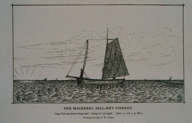 Cape cod mackerel drag-boat lying to at night From sketch by J Picture