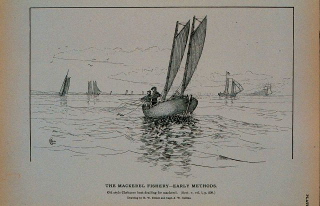 Old style Chebacco boats drailing for mackerel Drawing by H Picture