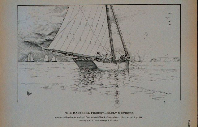 Angling with poles for mackerel from an old Noank, Connecticut, sloop Drawing by H Picture