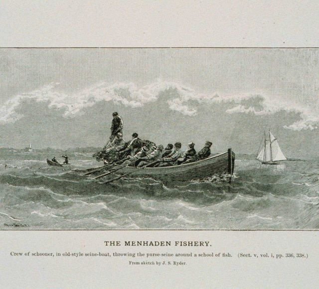 Crew of schooner, in old-style seine-boat, throwing the purse-seine From sketch by J Picture
