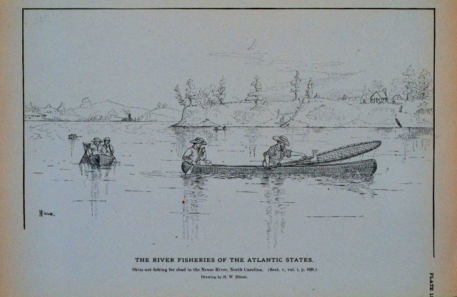 Skim-net fishing for shad in the Neuse River, North Carolina Drawing by H Picture