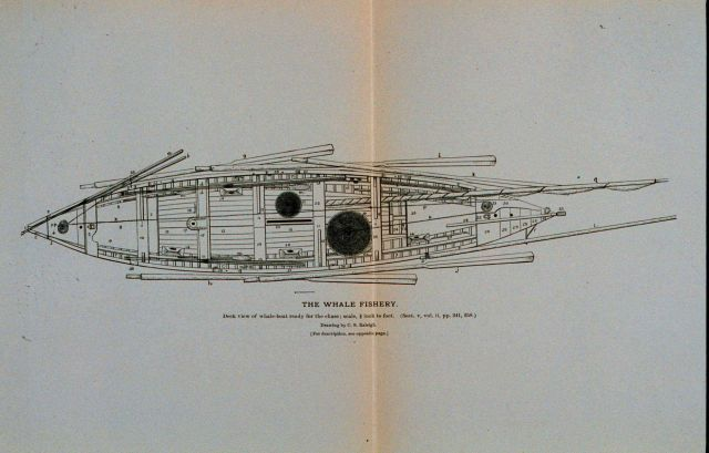 Deck view of whale-boat equipped with apparatus of capture, &c Picture