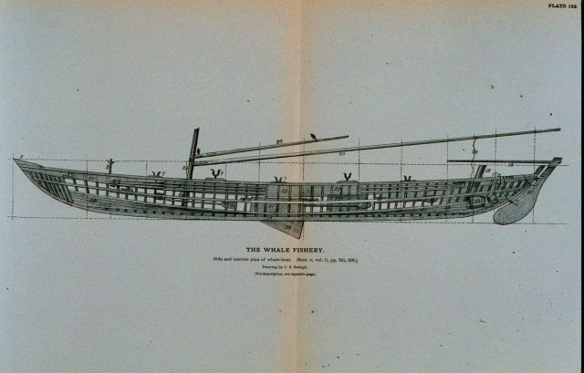Side and interior plan of whale-boat equipped with apparatus of capture, &c Picture