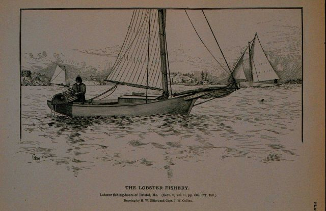 Lobster fishing boats of Bristol, Maine Drawing by H Picture