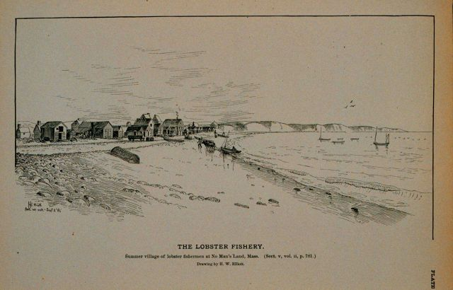 Summer village of lobster fishermen at No Man's Land, Massachusetts Drawing by H Picture