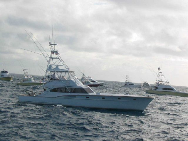 Sport fishing boats during tournament Picture