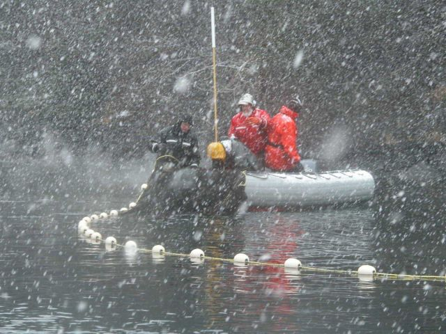 Seining from a small boat in a snow squall. Picture