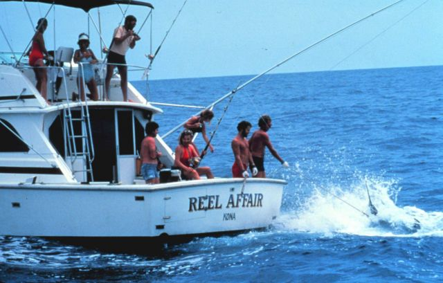 Charter vessel (CPFV) REEL AFFAIR showing large marlin being brought to the side of the boat Picture