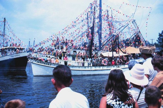 Shrimp boats in full regalia for the Blessing of the Fleet Picture