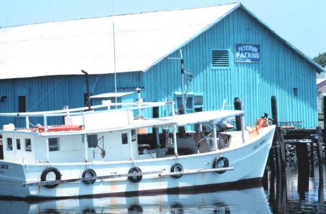 Fishing boat outfitted for spiny lobster and stone crab Picture