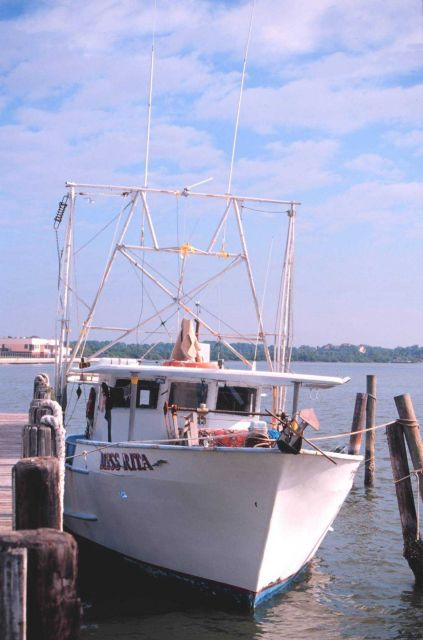 Small multi-purpose fishing boat at Madeira Beach Seafood Picture
