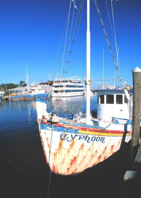 Tarpon Springs was established as a sponge fishing port in 1890 Picture