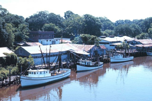 Shrimp boats at Darien along the Altamaha River Picture